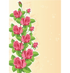 rose funny card vector image