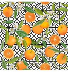 Seamless Pattern Orange Fruits Background vector