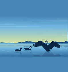 silhouette of swan at sunrise landscape vector image