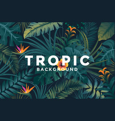 tropical background 5 vector image