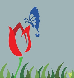 tulip field and butterfly vector image