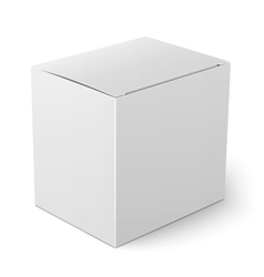 White paper box template vector image
