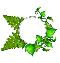 wreath of green leaves with frame for text vector image