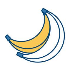 delicious banana fruit vector image