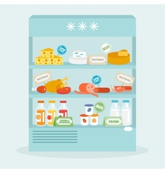 Food In Fridge Collection vector image vector image