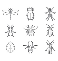 Insects mono line icons set vector image