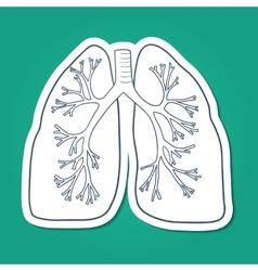 Anatomical lungs human organ vector