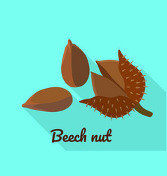Beech nut icon flat style vector