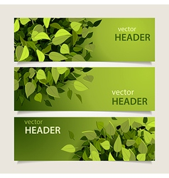 leaf headers set vector image