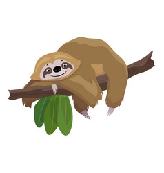 Sloth stay on tree icon cartoon style vector