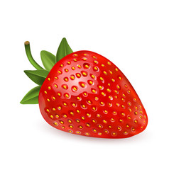 Strawberry sweet fruit 3d icons set vector