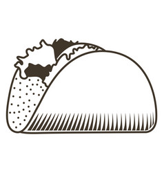 isolated mexican taco sketch vector image