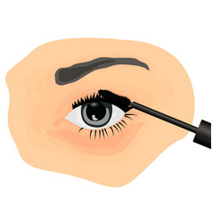 a girl applying mascara on to her eye vector image