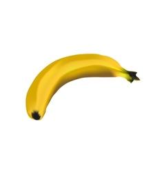 Banana vector