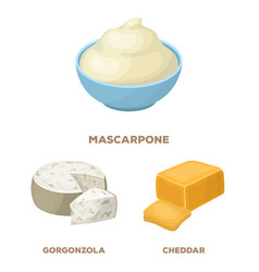 Different kind of cheese cartoon icons in set vector