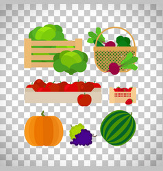 Farm baskets with vegetables and fruits vector