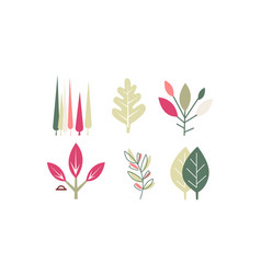 flat set different colorful leaves vector image