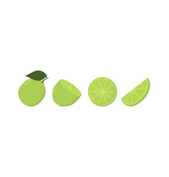 fresh lime fruits in different condition vector image