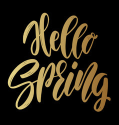 hello spring lettering phrase for greeting card vector image