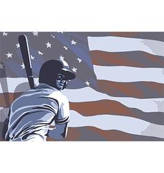 BASEBALL FLAG USA COLOR vector image vector image