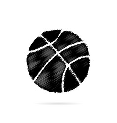 basketball with white stripes on a white vector image