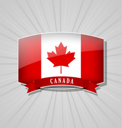 canadian icon vector image