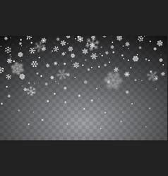 Christmas snow falling snowflakes on dark vector