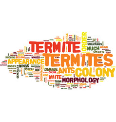 Termite appearance and morphology text background vector