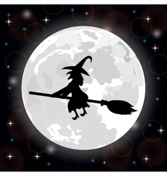 witch on a background full moon vector image