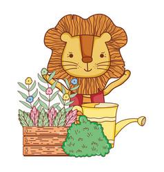 cute lion in the garden vector image