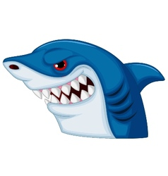 Shark head mascot cartoon vector image
