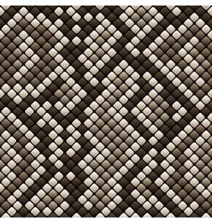Snakeskin seamless pattern vector image