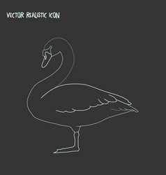 swan icon line element of vector image