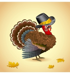 Turkey with Thanksgiving Hat vector image