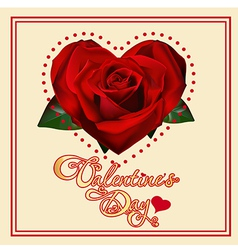 valentines day card with rose vector image
