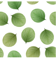 seamless leaves pattern eco background vector image vector image