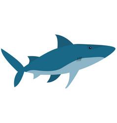 Predatory marine fish ravenous animal living vector