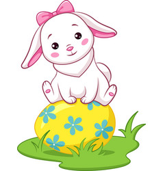 rabbit and easter egg vector image