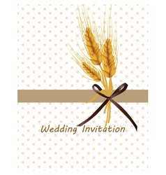 Vintage retro invitation with wheat ears vector