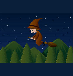 witch flying on magic broom at night vector image