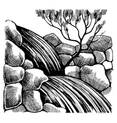black and white sketch drawing by hand vector image