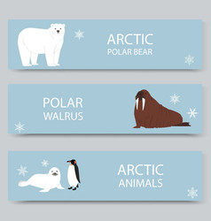 arctic animals and north pole cartoon banners set vector image
