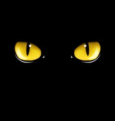 black cats eyes vector image