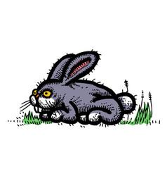 cartoon image of rabbit vector image