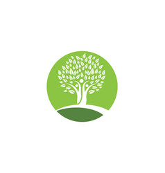 Family tree symbol icon design vector