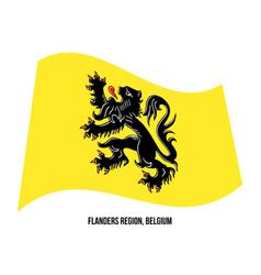 Flanders region belgium flag waving on white vector