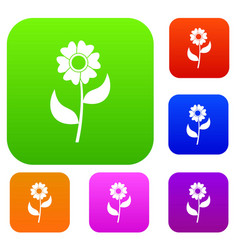 flower set collection vector image