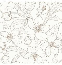 Hellebore winter rose flower foliage pattern brown vector