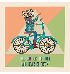 Hipster poster with nerd owl riding bike vector image
