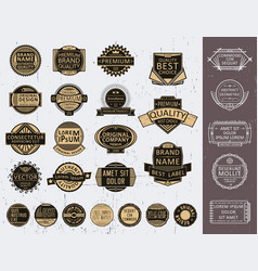 Insignias set vector